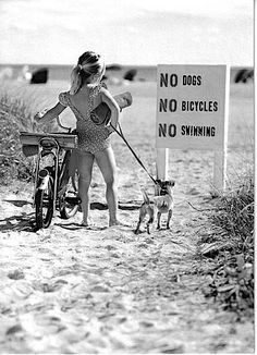 Pedal that bike straight to the ocean with your dog & take a dip anyway! ❤