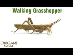 Origami Walking Grasshopper tutorial (Brian Chan) 折り紙  バッタ оригами Кузнечик - YouTube