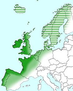 Atlantic Europe - Wikipedia, the free encyclopedia