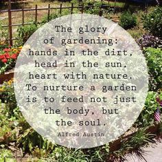 Gardening around the house helps garden quotes, garden signs Dream Garden, Garden Art, Garden Plants, Garden Club, Garden Junk, Rain Garden, Vegetable Garden, Indoor Plants, Organic Gardening