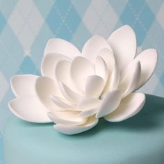 Small White Lotus Flower handmade from gumpaste.  | CaljavaOnline.com #caljava #sugarflower