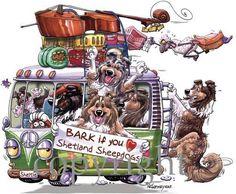 Bark if you love Shelties