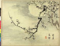 Taki Katei, Painting, album leaf, Full moon and plum tree, 19th cent., The British Museum