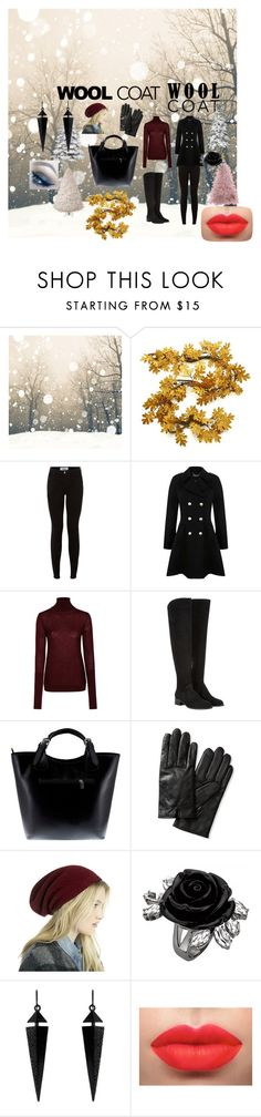 """""""snow day"""" by adisa-hadzic4 ❤ liked on Polyvore featuring Crate and Barrel, Miss Selfridge, Nicole Farhi, Elia B, Massimo Castelli, Banana Republic, Sole Society and Oasis"""