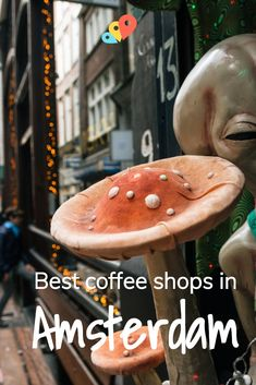 Top 5 Best Coffee Shops In Legendary Amsterdam! l itinari Coffee Candle, Coffee Plant, Coffee Gifts, Coffee Creamer, Drip Coffee, Coffee Break, Winter Coffee, Coffee Cozy, Coffee Barista