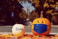 Duke University, Pumpkin Carving, Vegetables, Food, Essen, Pumpkin Carvings, Vegetable Recipes, Meals, Yemek