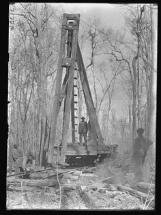 Pile driver in advance of skidder laying track. Photo by Huron H., North America Original material: inch glass negative Digital Identifier: Learn more about The Field Museum's Library Photo Archives. Diorama, Pile Driver, White Tractor, Beautiful And Twisted, Logging Equipment, Field Museum, Road Construction, Rail Car, Wood Tree