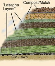Lasagna Garden Layers -- Here's a cross-section of what goes on top of the ground in a lasagna garden.  Your base can be wet newspapers or wet cardboard.
