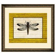 Dragonfly Framed Print III