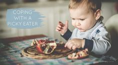 Is your toddler a picky eater? Do they refuse food, turn their nose up at anything even remotely healthy? Here are our best tips and advice on coping. Toddler Stuff, Bottle Feeding, Baby Hacks, Picky Eaters, Baby Feeding, Baby Sleep, Need To Know, Breastfeeding, Dog Food Recipes