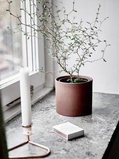 Interior Windows, Interior Exterior, Decorating Your Home, Interior Decorating, Window Sill Decor, Nordic Interior, Nordic Design, Green Plants, Plant Decor
