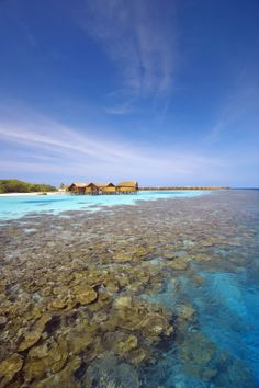 We are looking at Lily Beach Maldives resort in Huvahendhoo island.