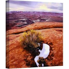 Dean Uhlinger Island In The Sky Gallery-Wrapped Canvas, Size: 18 x 18, Brown