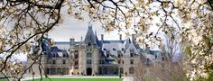 Ashville...Biltmore Mansion. A must see and tour...also there is a winery.  Christmas is beautiful inside the mansion.