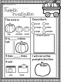Download free printables at preview. Pumpkin investigation. Fall Math and Literacy No Prep - Kindergarten. An excellent pack with a lot of sight word, CVC spelling, vocabulary, word work, reading, fluency and other literacy activities and practice