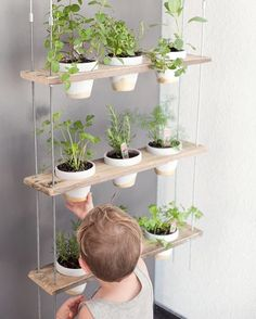 Ideas for a Stylish Indoor Kitchen Herb Garden A DIY plant hanger is an excellent way to bring a fresh herbs into your home. Check out this family friend plant hanger that can be added to any room for fresh herbs and beautiful blooms all year long! Herb Garden In Kitchen, Kitchen Herbs, Herbs Garden, Long Kitchen, Kitchen Ideas, Backyard Kitchen, Kitchen Decor, Kitchen Interior, Diy Kitchen