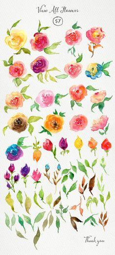 Watercolor Roses DIY - Illustrations