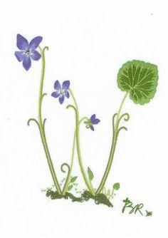 Alphabet Botanique W | The French Needle | French Needlework Kits, Cross Stitch, Embroidery, Sophie Digard #FrenchNeedleMayContest