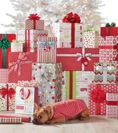 It's a Gift Wrap Wonderland!