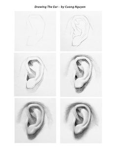 Drawing the Ear step by step by Cuong Nguyen https://www.facebook.com/icuong?fref=photo