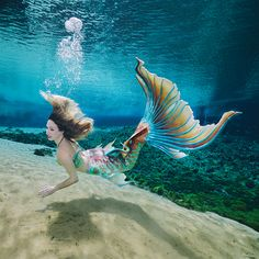 Time to flip the page of the 2017 Weeki Wachee Mermaid calendar to Mermaid Danielle. Tails for the calendar graciously provided by Merbella Studios Inc., and photographed by Andrew Brusso. Mermaid Swim Tail, Mermaid Man, Mermaid Cove, Mermaid Swimming, Mermaid In Love, Fantasy Mermaids, Mermaids And Mermen, Unicorns And Mermaids, Mythical Creatures