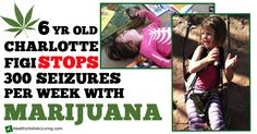 6 Yr. Old Girl Stops 300 Seizures a Week with Marijuana - Healthy Holistic Living.         Medical marijuana should be available to everyone in this country. Any elected official who says other wise should be voted out of office. It is plain cruelty to withhold this from the people. What gives them the right?  Cruel people.