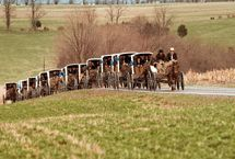 An Amish funeral procession. Amish Town, Amish Country Ohio, Pennsylvania Dutch Country, Amish Family, Amish Farm, Amish Culture, Amish Community, Follow The Leader, Ontario