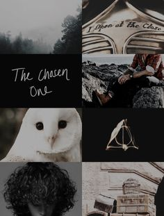 harry potter aesthetics: harry james potter The Chosen One // I open at the close