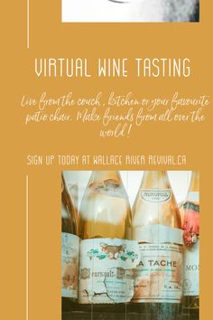 Live from the couch, kitchen or your favourite patio chair. White Wine, Red Wine, Monopole, Wine Funnies, Chenin Blanc, Wine Quotes, Sparkling Wine, Wine Tasting, Wine Recipes
