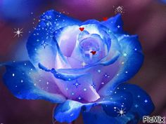 See the PicMix rosa azul belonging to mivica on PicMix. Moving Photos, Picture Cards, I Wallpaper, Birthday Greetings, Animated Gif, Scenery, Sparkle, Animation, Creative