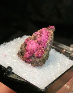 Lovely Erythrite Specimen from Mexico in Thumbnail Box. Vintage Estate Find