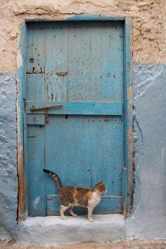 blue door and cat in Medina - Essaouira, Morocco - photo by Brian Greenbaum