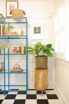 fiddle leaf fig, ikea bookshelves