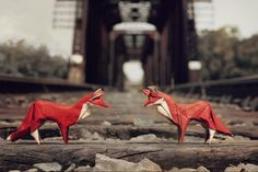 "https://flic.kr/p/u47CZh | Fox Brothers at the Bridge | <i><b>""In every conceivable manner, the family is link to our past, bridge to our future."""