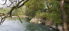 Río MESA donde siempre hay buena pesca  Cuando pasábamos unos días allí siempre teníamos truchas y cangrejos que el Cachorro pescaba a mano  ¡con lo que se escurren al lavarlas !