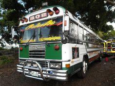 Merlin 1 AA Malta Bus, Rv Campers, Merlin, Blue Bird, Volkswagen, American, Vehicles, El Salvador, Car