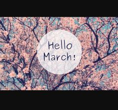Uploaded by حياة💕. Find images and videos about flowers, spring and hello on We Heart It - the app to get lost in what you love. Bonjour Mars, Hello Spring Wallpaper, Hello March Images, March Quotes, March Book, February, Spring Song, Image Originale, Spring Weather