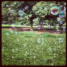 Bubbbbbbles, Yoyogi Park, Tokyo