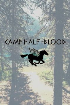 Photo of Camp Half Blood for fans of Percy Jackson and the Olympians.