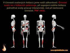 černá svalová lesba