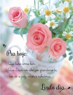 Happy Day, Good Morning, Rose, Plants, Night, Best Wishes Messages, Flowers, Places, Bom Dia