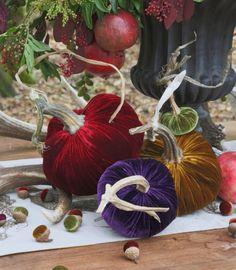 Original Silk Velvet Pumpkins-Velvet pumpkins with real stems Velvet Pumpkins, Fabric Pumpkins, Modern Fall Decor, Pumpkin Display, Pumpkin Picking, Pumpkin Wreath, Autumn Crafts, Pumpkin Decorating, Fall Decorating