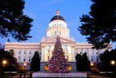 Albero di Natale - Sacramento, California