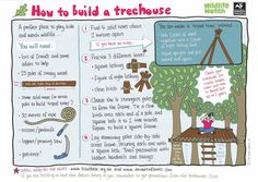 Wildlife Watch - Activity Sheets for Ava the Explorer