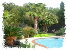 Pool Tropical Landscaping Ideas incredible 1000 ideas about tropical pool landscaping on pinterest