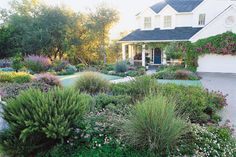 """lawnless front yard ...I like the texture and color for the """"island"""" between the front curb and the front circle drive."""