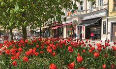 Conheça Karlovy Vary, a segunda cidade mais visitada da República Tcheca