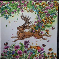 #mythomorphia #kerbyrosanes #kleurenvoorvolwassenen #kleuren #color #coloringbook #coloringforadults