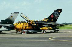 German Luftwaffe Tornado Tiger