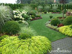 Ogród mały, ale pojemny;) - strona 137 - Forum ogrodnicze - Ogrodowisko